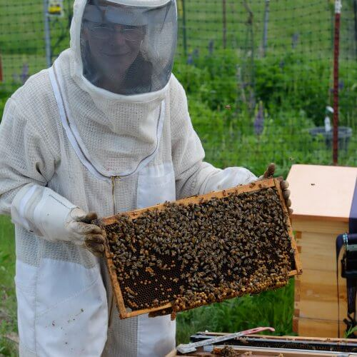 Did you know Dr Tish is a beekeeper?